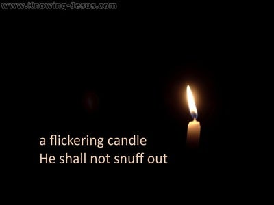 Matthew 12:20  A Flickering Candle Shall Not Be Snuffed Out (white)